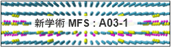 新学術MFS:A03-1